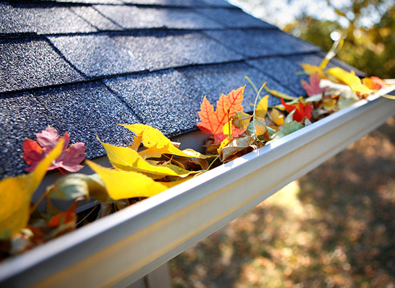 Replace Unprotected Gutters